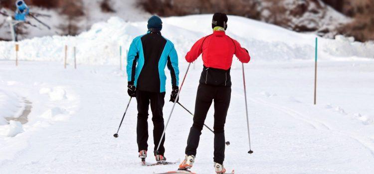 Zorganizowane wyjazdy na narty – czy to się opłaca?